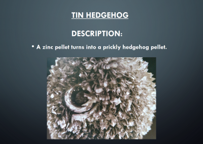 Tin Hedgehog