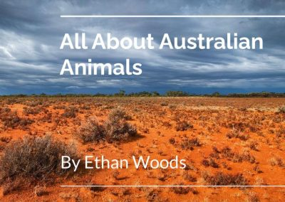 All About Australian Animals