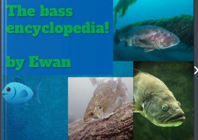 The Bass Encyclopedia